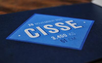Cisse-overview2